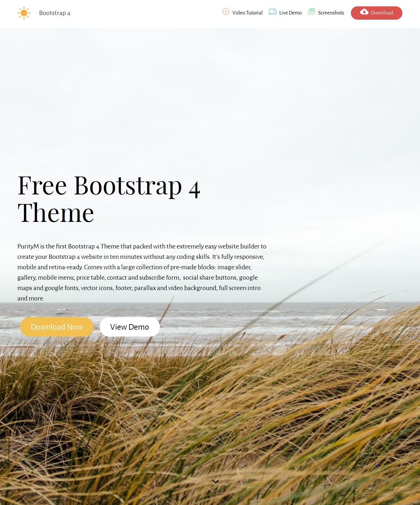 HTML Bootstrap Magazine Theme