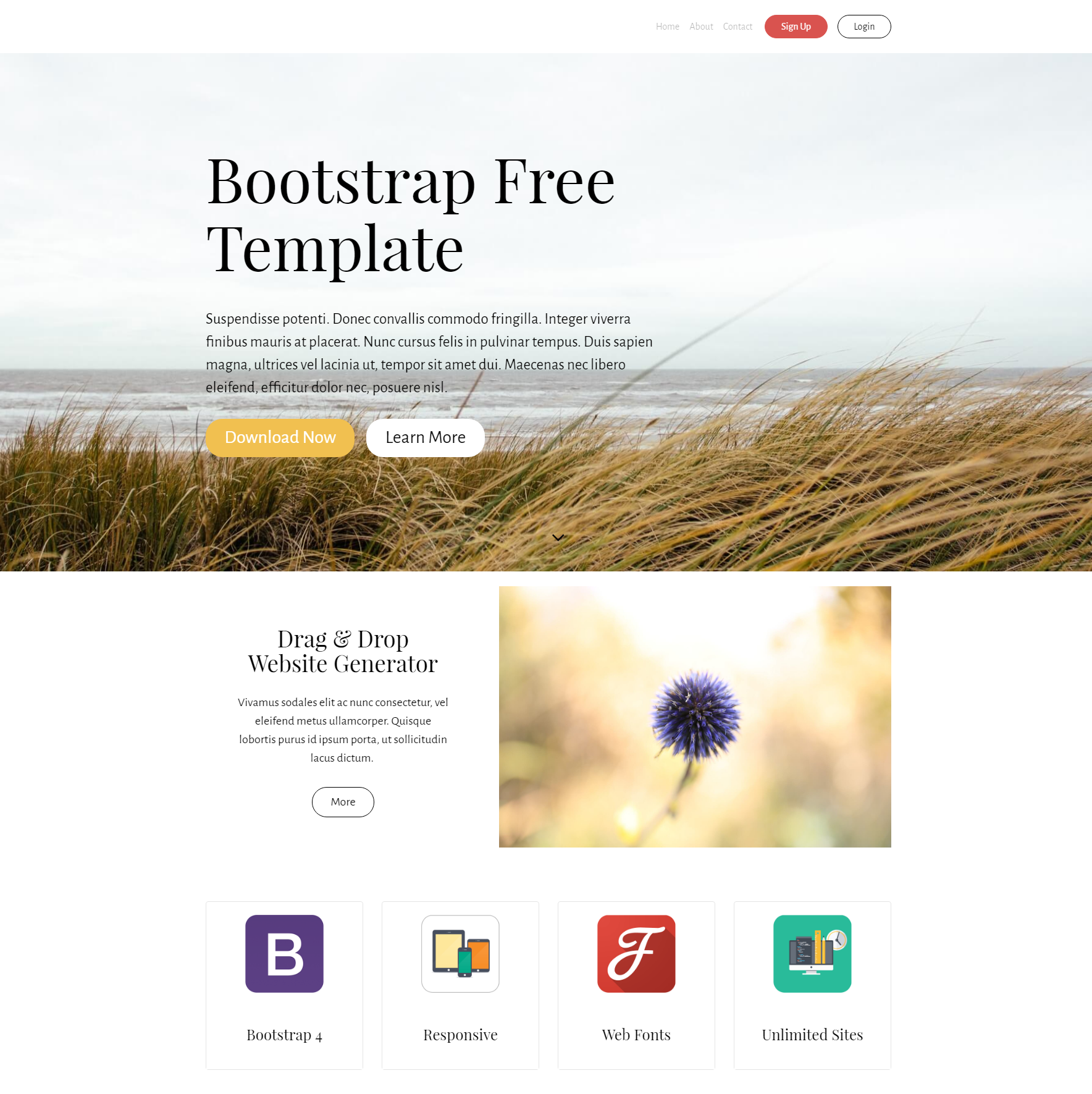 Free Bootstrap PurityM Themes