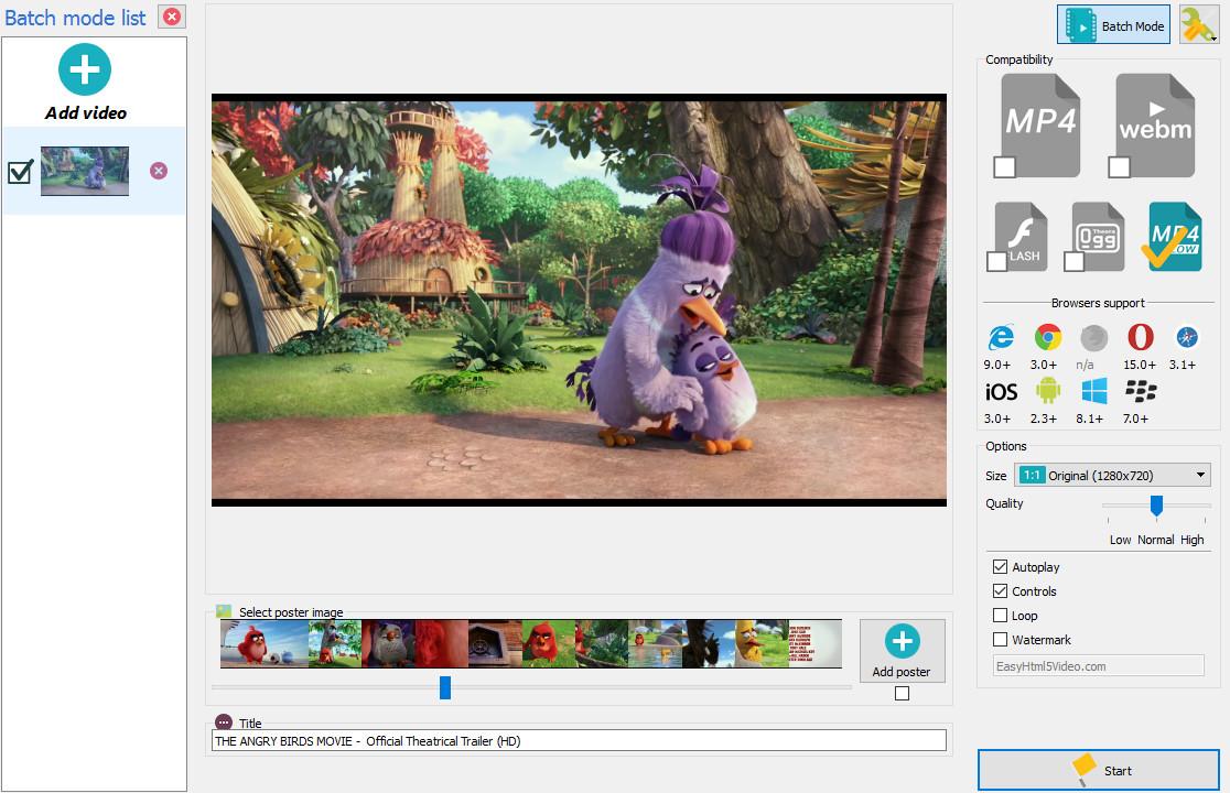video tag fullscreen
